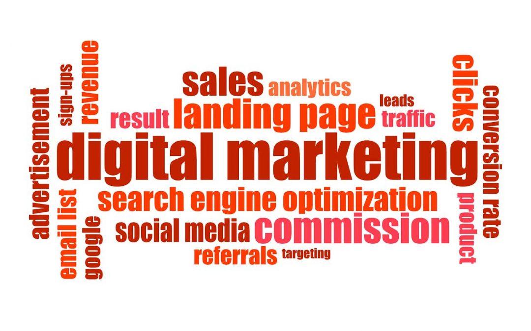 Experto en marketing digital, no gracias